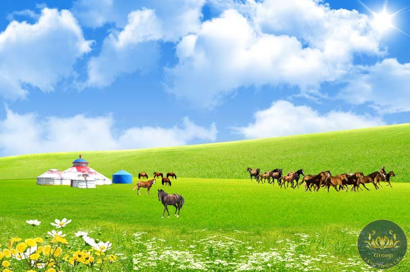 Tranh mã đáo thành công 3D chạy trên đồng cỏ xanh